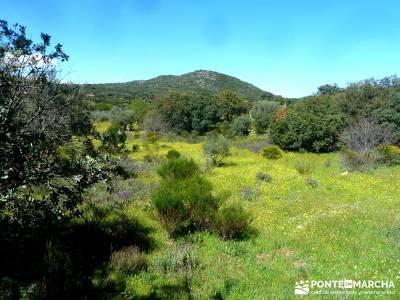 Piedra Escrita Diosa Diana; senderos viajes y turismo; excursiones fin de año;sitios para visitar e